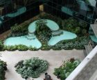Overview of Indoor Plants with Pools and Waterfalls