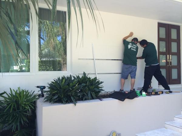 Beginnings of a Green Wall