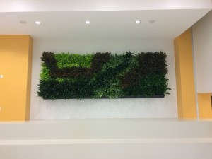 installed green wall