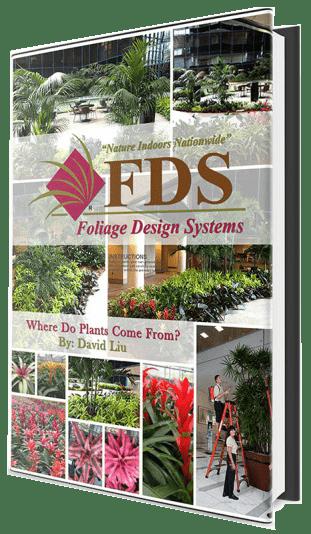 Foliage Design Ebook Cover