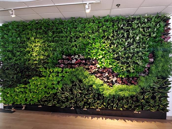 indoor green walls Orlando FL