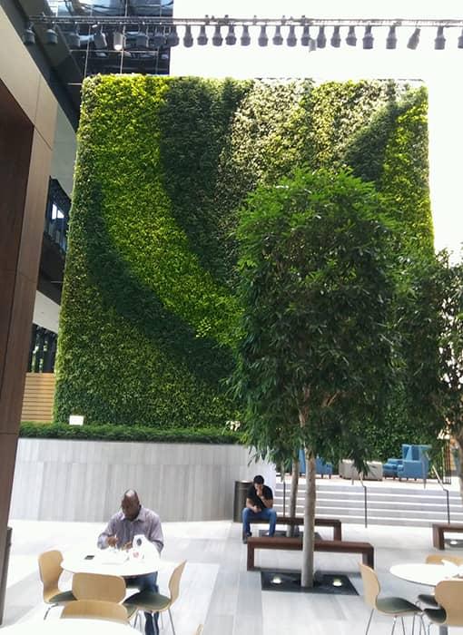 Exterior Plantscape Service by Restaurant